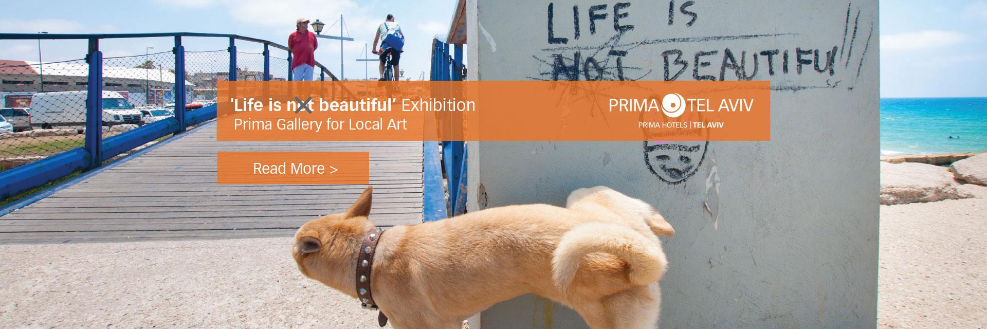 Prima Tel Aviv Gallery