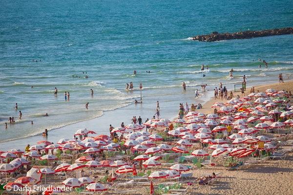 Experience the Beach