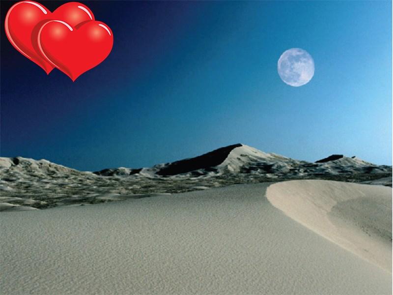 The Desert in Moonlight